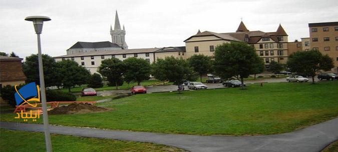 دانشگاه سینت آن