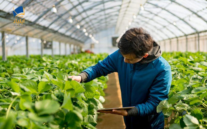 Image result for کشاورزی در دانشگاه