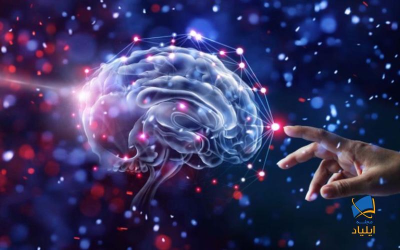 دانشمندان علم نوروساینس رویکردهای مختلفی را جهت مطالعهی سیستمهای عصبی اتخاذ کردهاند و در سالهای اخیر پژوهشها از مطالعهی مولکولی نرونها به سمت مطالعهی کارکرد بخشهای مختلف مغز گسترش یافته است.