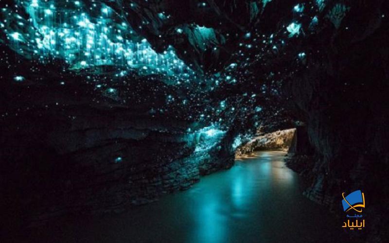 منحصر به فرد بودن این غارها درخشان بودنشان است که دلیل آن وجود کرمهای شبتابی است که دراین غارها زندگی میکنند.